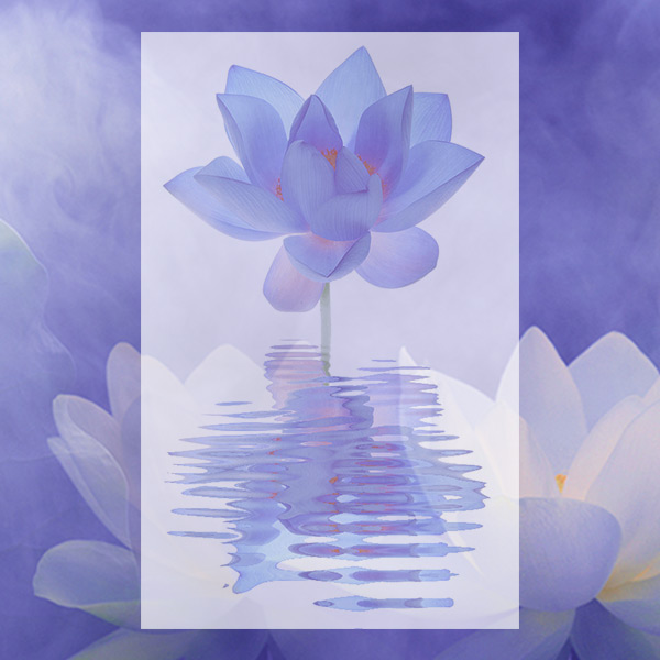 2 Day Workshop: Healing into Consciousness