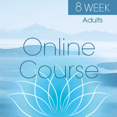 8 Week Online Course