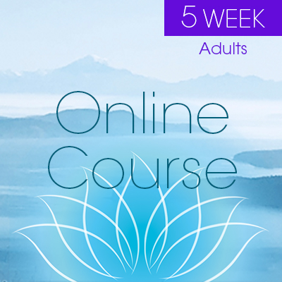 5 Week Online Course